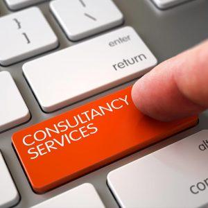 Halpins computer consultancy services